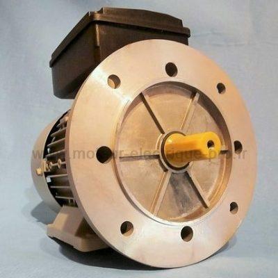 moteur electrique 220v mono