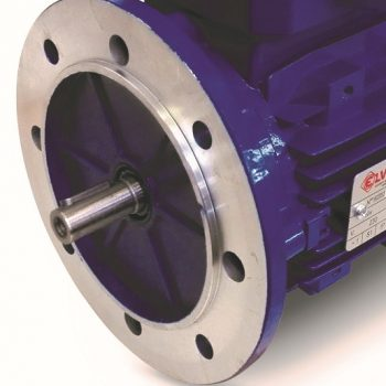moteur electrique mono 1.5cv 1500 b5