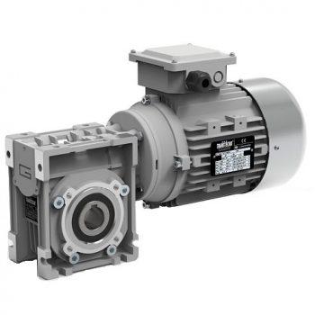 Motoréducteur triphasé roue et vis Transtecno CM030 0.18kw